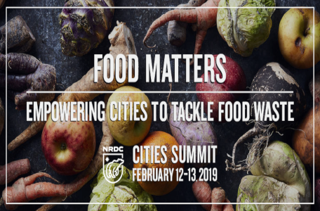 Food Matters Empowering Cities to Tackle Food Waste